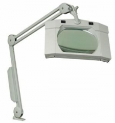 Wall Mount Clear View Magnifier